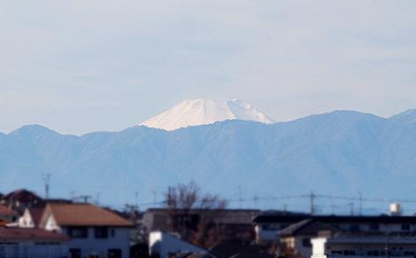 010113fuji.jpg