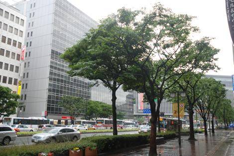061011hakata1.jpg