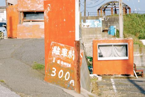 cyoshi11.jpg