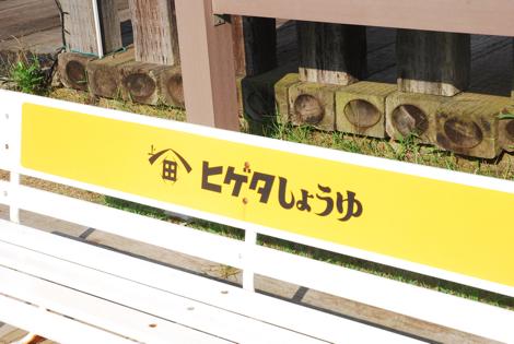 cyoshi16.jpg
