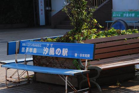 cyoshi6.jpg