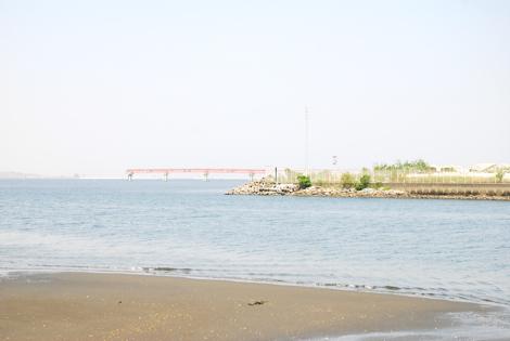 hanakoppoi1.jpg