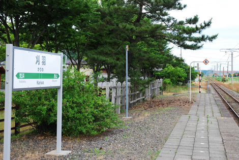 kashiwa13.jpg