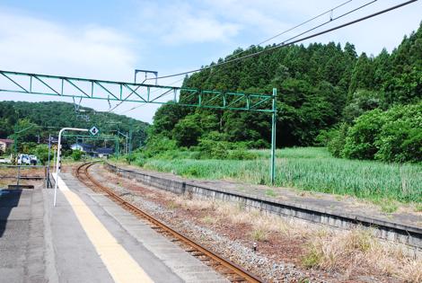 kashiwaa3.jpg