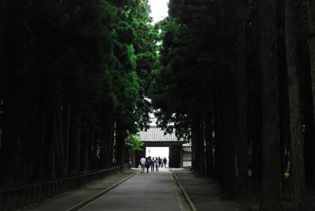 matsushimaagain5.jpg