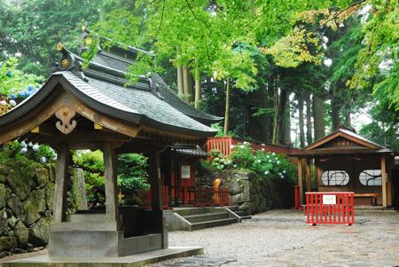 zuihou5.jpg